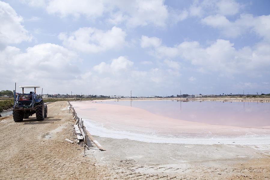 salt of the earth - salt field