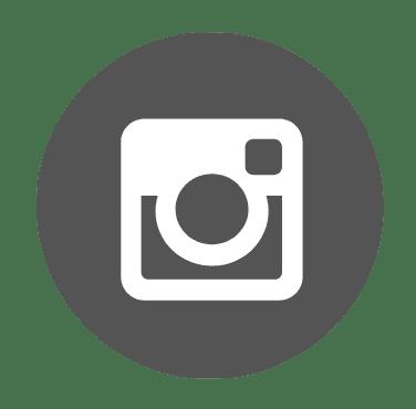 לוגו אינטגרם - לעמוד מלח הארץ